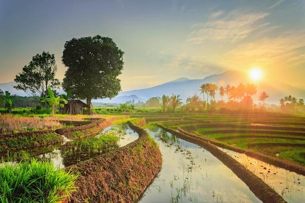 여름에 일출에 산이 있는 작은 마을의 아침 전망