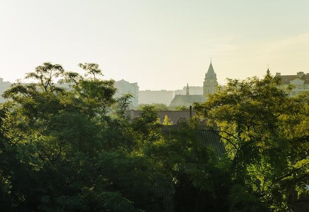 街の朝の景色。塔の頂上は前景の木々や屋根の後ろにあります。