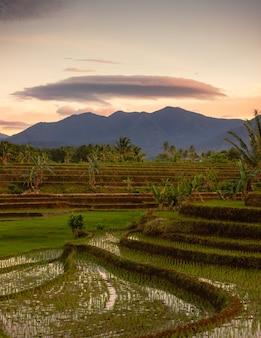 Bengkulu, 인도네시아의 논에서 산과 모자 구름이있는 아침보기