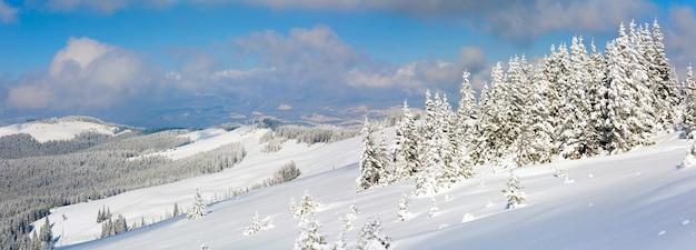 슬로프에 전나무 숲과 해명 그룹과 아침 겨울 진정 산 풍경