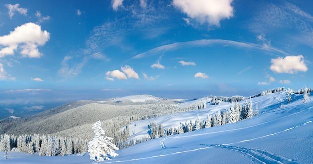 Утренний зимний спокойный горный пейзаж с еловым лесом на склоне, карпаты, украина. мультикадры высокого разрешения сшивают изображение.