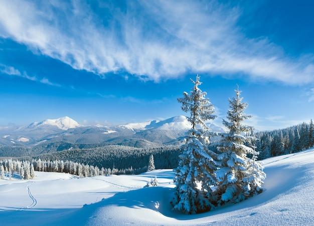 Утренний зимний спокойный горный пейзаж с сугробами и елями на склоне, карпаты, украина. составное изображение нескольких кадров.