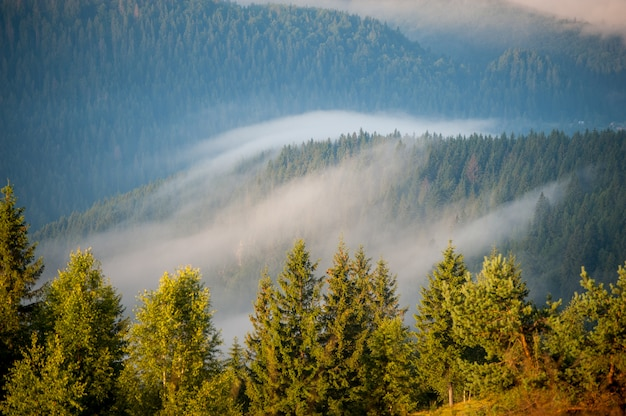 Morning with fog over mountain slopes