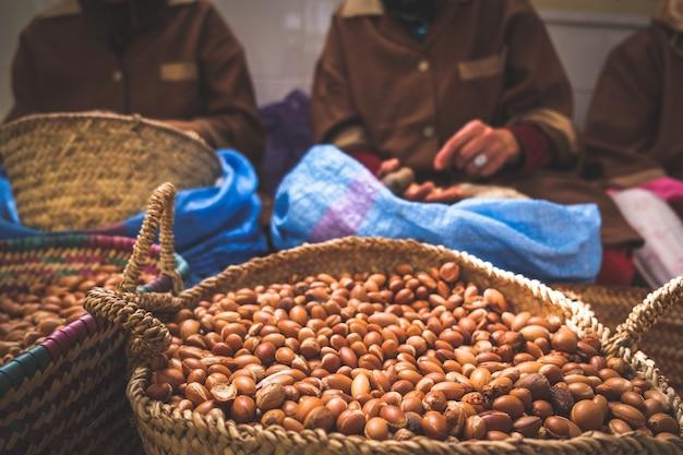 Moroccan women working with argan seeds to extract argan oil.