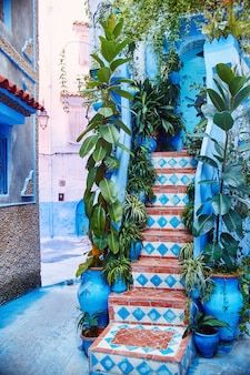 Morocco is the blue city of chefchaouen, endless streets painted in blue color. lots of flowers and souvenirs