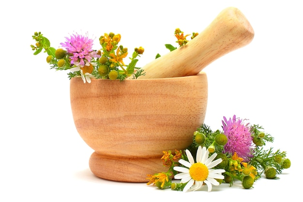Mortar, medicine herbs and flowers isolated