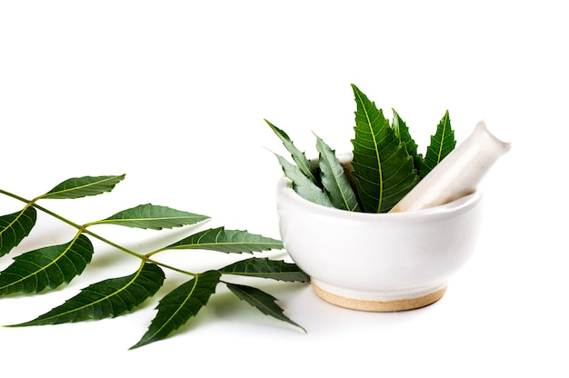 Mortar and pestle with medicinal neem leaves on white background