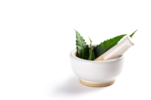 Mortar and pestle with medicinal neem leaves on white