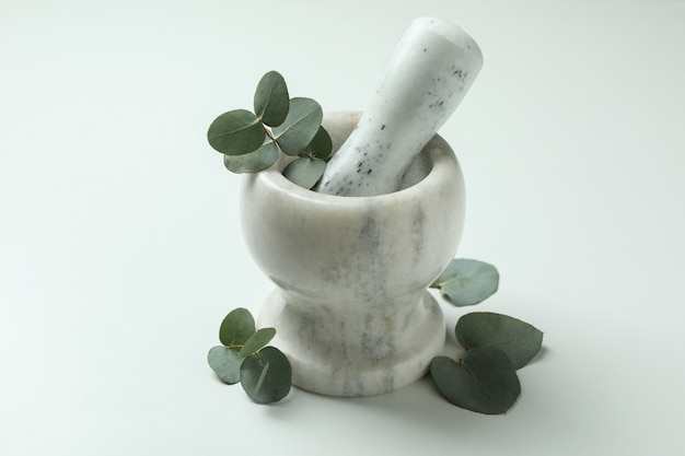 Mortar with eucalyptus twig on white background