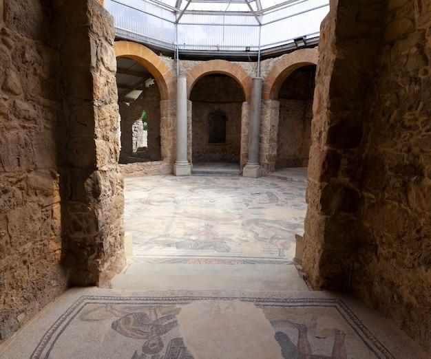 Mosaics of frigidarium. villa romana del casale, piazza armerina
