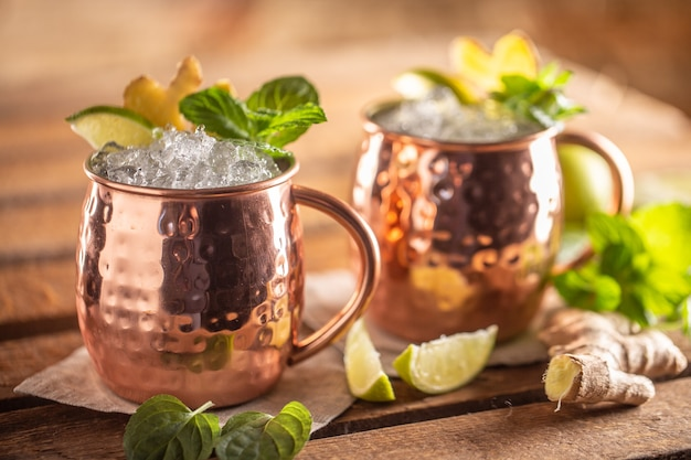 Moscow mule highball cocktail and a long vodka drink with fresh lime, ginger beer, and mint.