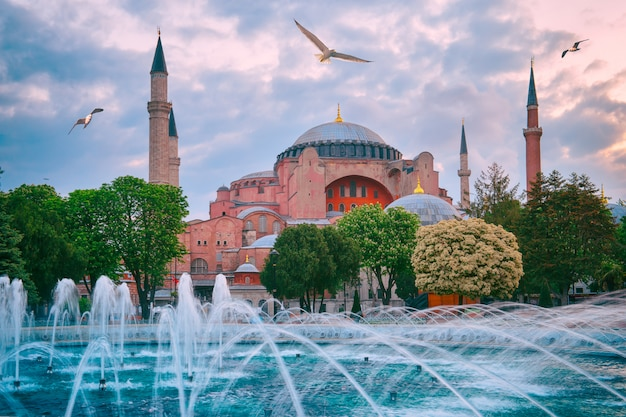 Mosque aya sofia with gulls in the sky