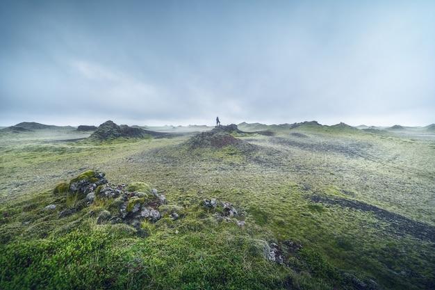아이슬란드 화산암의 이끼와 안개