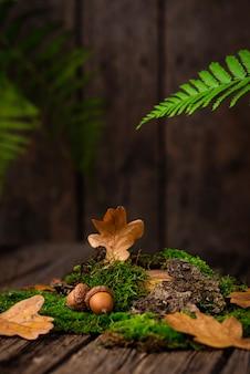 コケ、オークの葉、樹皮