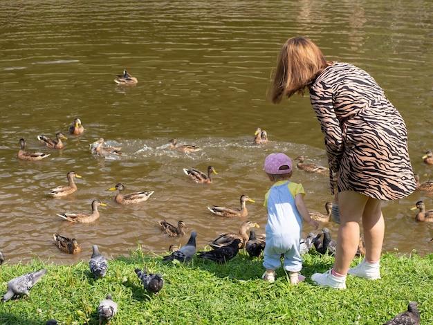 엄마와 아이는 도시 호수 기슭에 새들에게 먹이를 준다