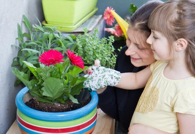 母と子の園芸花植物