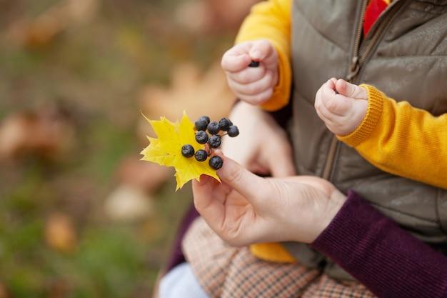 Мать и ребенок, держа в руках ветку с ягодами черноплодной рябины