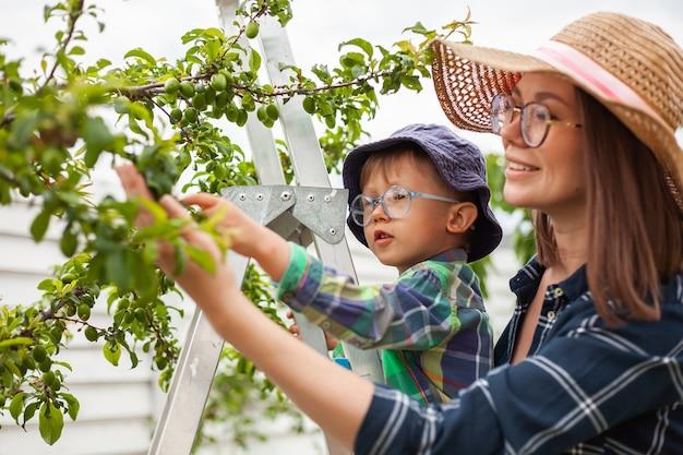 나무 근처 사다리에 엄마와 아이, 뒤뜰 정원에서 정원 가꾸기