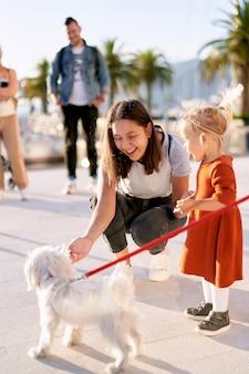Мать и дочь играют с маленькой белой пушистой собакой на пирсе в солнечный день.