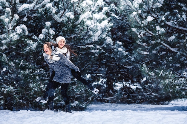 母と娘は冬の森で遊んで楽しんでいます。