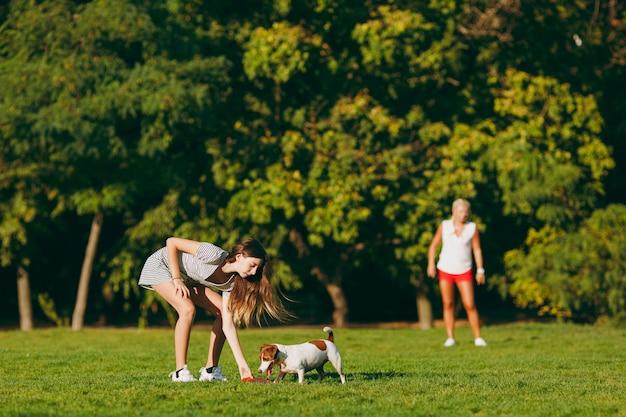 엄마와 딸이 오렌지색 비행 디스크를 푸른 잔디에서 잡는 작은 재미있는 개에게 던졌습니다. 작은 잭 러셀 테리어 애완동물이 공원에서 야외에서 놀고 있습니다. 개와 여자. 야외에서 휴식하는 가족