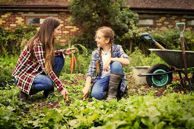 母親と娘が農場で働いています