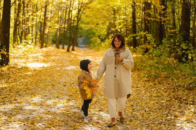 母と息子は子供連れの家族のために秋の森の秋の野外活動を歩いています