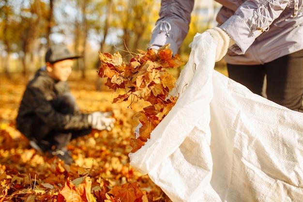 母と息子が秋の葉を屋外で掃除します。環境保護活動家。