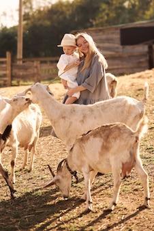 어머니와 아들이 농장에서 동물들 사이에서 산책