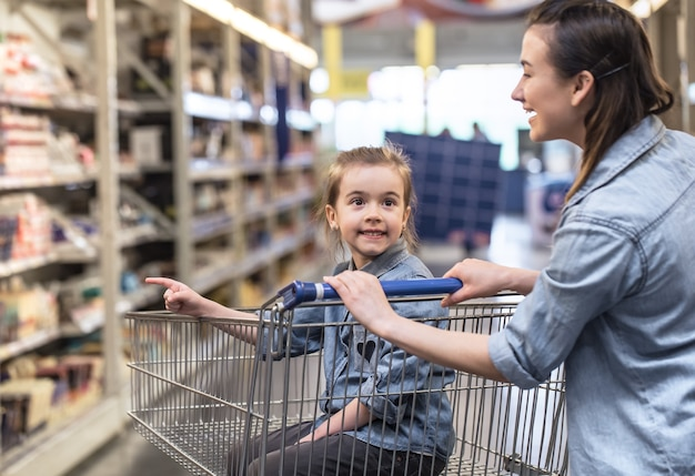 Mother and daughter in blue shirts shopping in supermarket using cart