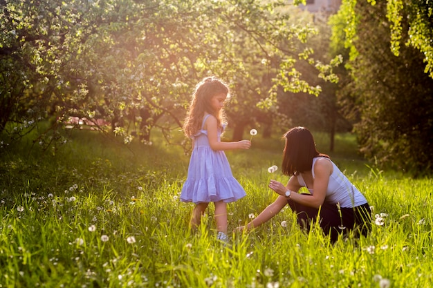 Mother and daughter collecting dandelion flowers in the park