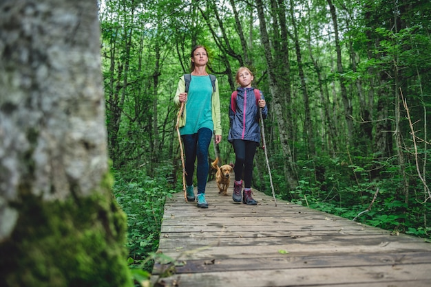 Mother and daughter with a dog hiking in the forest