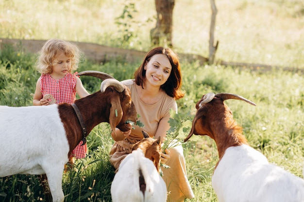 A mother and her beautiful and curly daughter graze goats on an eco farm