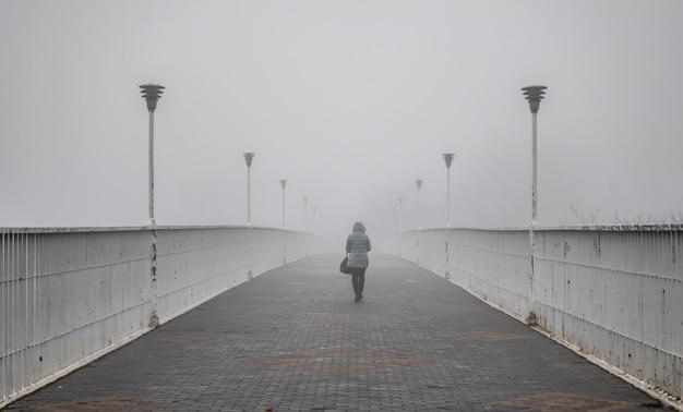 Свекровь мост в одессе, украина, в туманный осенний день