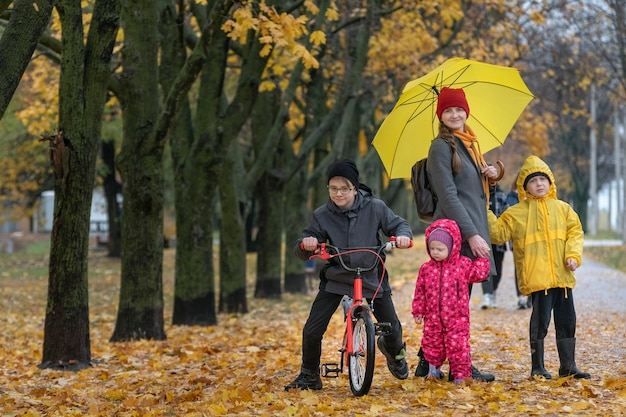 Mother of many children with three children is walking in autumn park. alley with fallen leaves.