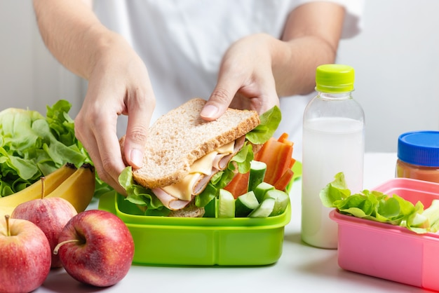 Mother preparing school lunch box set