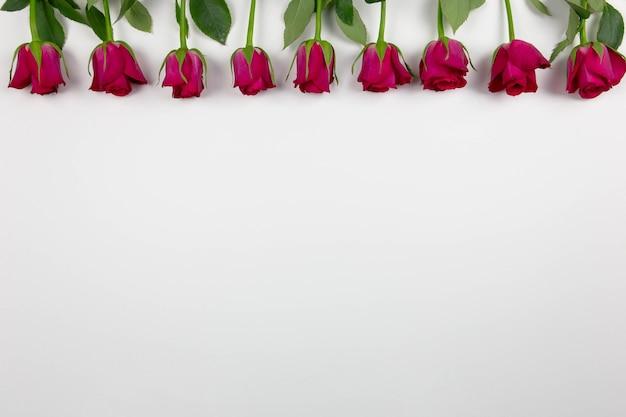 화이트에 빨간 장미와 어머니의 날입니다.