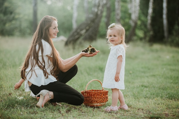 Mother shows children little ducklings in wicker basket. duckling in the hands of a woman. mom shows her daughter a little duckling in the park