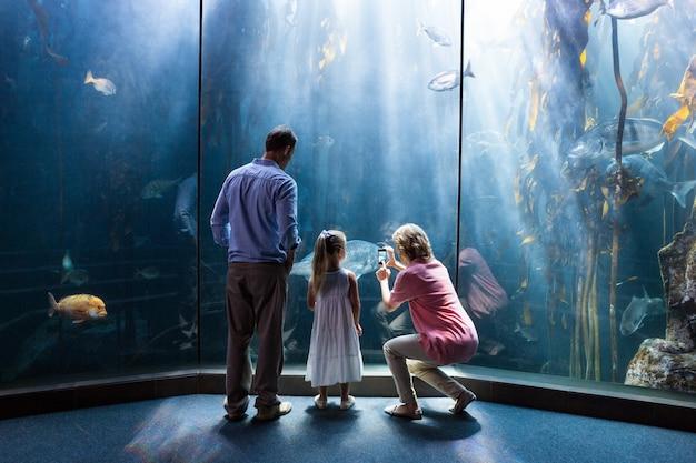 Мать фотографирует рыбу, пока дочь и отец смотрят на аквариум