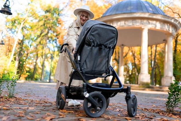 公園を歩いているベビーカーを持つ母