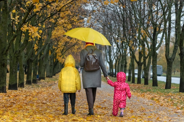 Mother with two children is walking in autumn park with yellow umbrella in the rain. fallen leaves. back view.