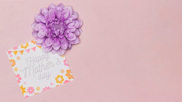 Mothers day card and flower with copy space