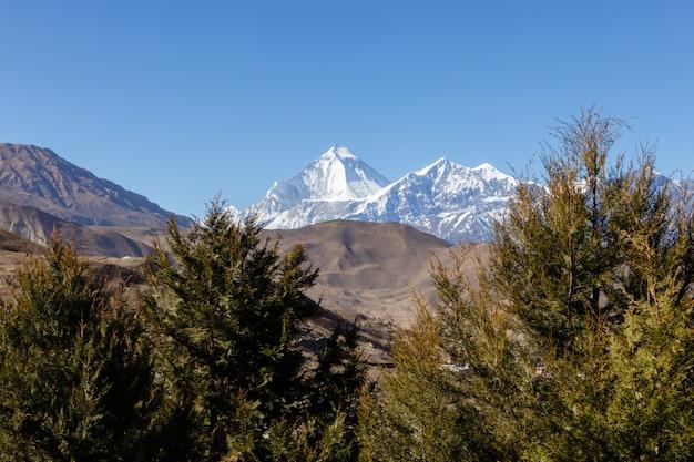Mount dhaulagiri and tukuche peak. nepal