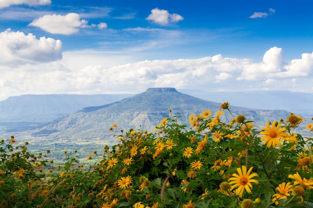 Mount fuji at loei province, thailand. this's mountain looks like mount fuji in japan