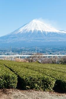 Mount fuji with snow and green tea plantation in yamamoto fujinomiya city shizuoka ken japan