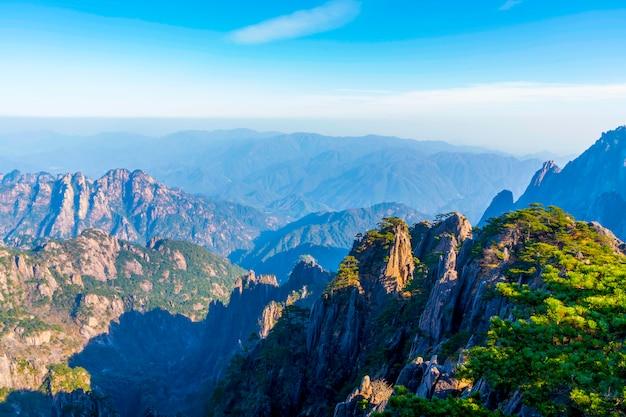 황산 산 정상 돌과 소나무