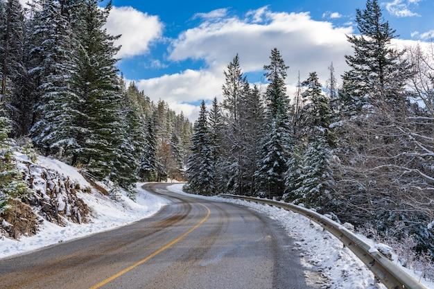 Mount norquay scenic drive mountain road. banff national park, canadian rockies, alberta, canada.