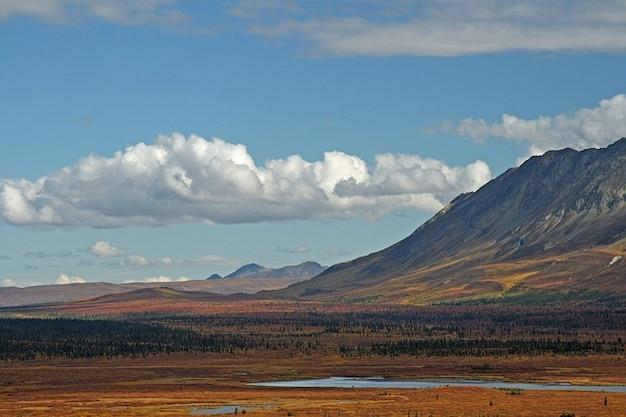 Mountain alaska pond mountains wilderness nature