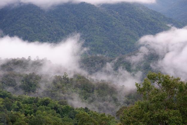 Горный и туманный пейзаж с голубым небом высокого вида