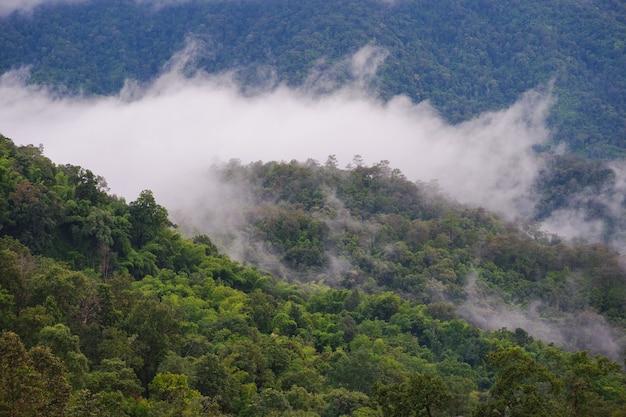 Горный и туманный пейзаж с голубым небом высокого вида Premium Фотографии